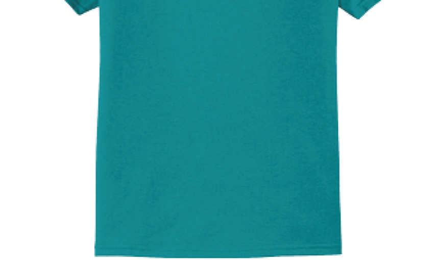TeamFish Bowling T-Shirt Teal Hook It Logo Back